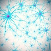 Alzheimer's-like neurological disorder identified